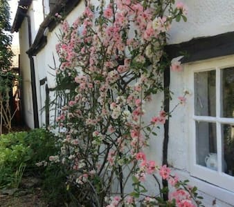 Romantic room in lovely cottage. - Warborough - Zomerhuis/Cottage
