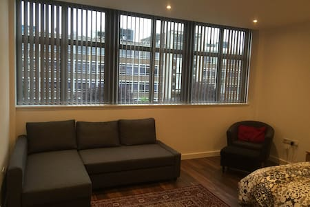 Large studio flat: 30 mins to central London - Pis
