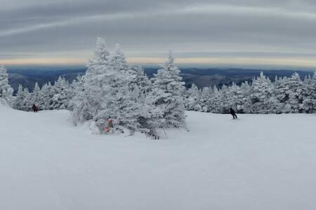 Ski in, Ski Out Condo -- Pico Mountain, Killington - Wohnung