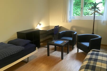 Lovely, large and quiet room (#2) - Adliswil - Stadswoning
