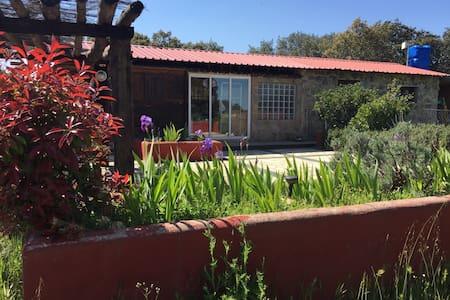 Cabaña/Cottage y ¡momentos únicos! - Colmenar Viejo - Casa de campo