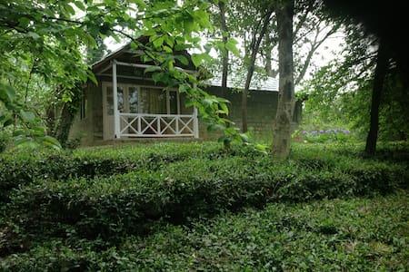 Two bedroom Iris Cottage at Tea Garden Resort - (ukendt)