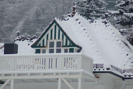 Dachstudio in Villa mit Aussicht - Friedrichroda - Apartment