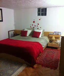 grande chambre cosy - Arras - Huis