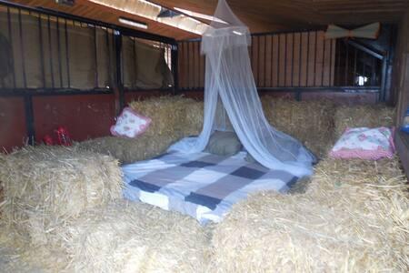 Lekker slapen op stro en een bedje van hooi - Egyéb