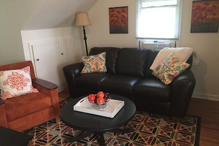 St. Augustine Loft Mayo Clinic - Rochester - Apartment