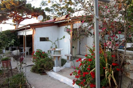 Studio apartment in Ikaria - Apartamento
