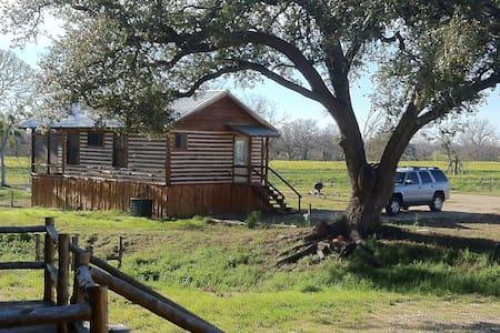 cedar cabin on san marcos river - Hytte