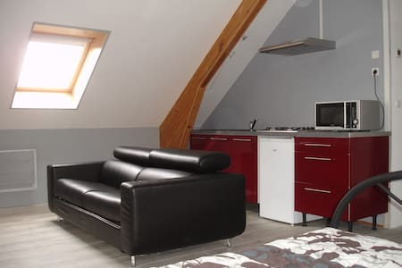 studio proche golf d angers tous confort pour 1à4 - Saint-Jean-des-Mauvrets - Daire