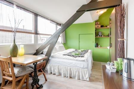 Cosy comfortable attic room Haarlem - Maison