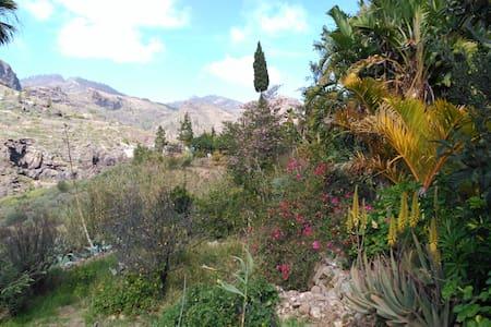 Casa Canaria de Campo  Pequeño Oasis - Rumah
