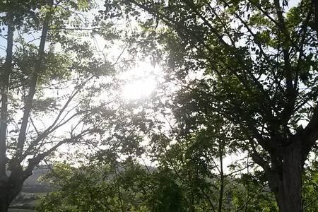 VACANZE LUCANE - Vila
