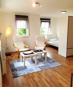 New renovated 1 room flat in Besigheim-Ottmarsheim - Apartment