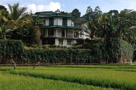 Paddyfield Hideaway - Wegiriya - Casa
