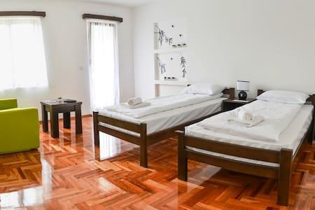 Clean,tidy,very nice view,sunny,friendly. - Loznica - Villa