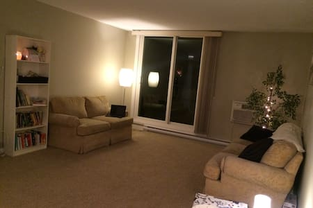 Spacious and Cozy 1 Bdr Condo - Winnipeg