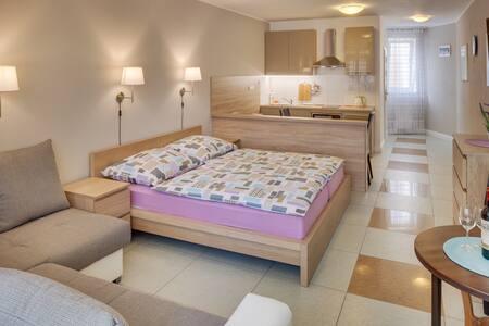 Comfy Private Studio Apartment near Prague center - House
