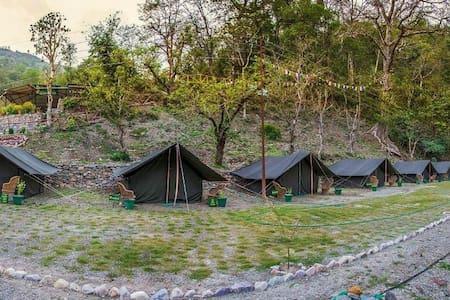 Jungle camping adventure Rishikesh - phool chatti - Tent