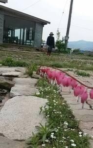 강화도게스트하우스배꽃집Ganghwa Island Guest House Baekhoc - Bed & Breakfast