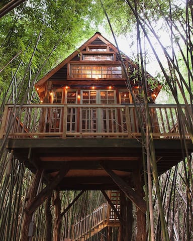 Alpaca Treehouse In The Bamboo Forest Treehouses For