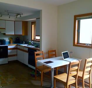 Charming studio in Aspen core - Aspen - Apartment