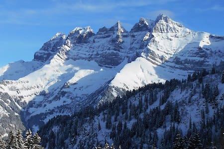ski in & out Portes du soleil sunny apt 6p comfort - Val-d'Illiez