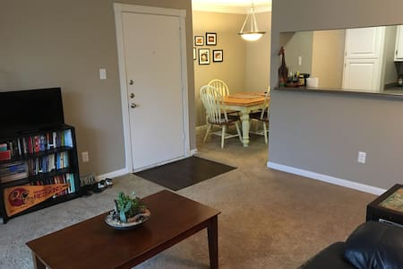 Great Full Apt with two large beds!