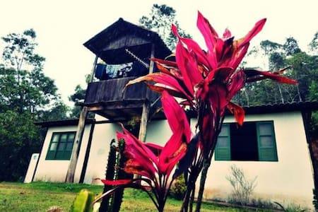 sitio arvore camara - House