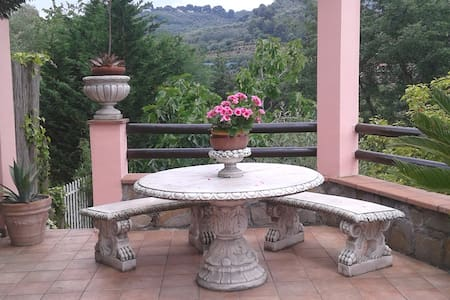 The charming terrace - Imperia - Apartment