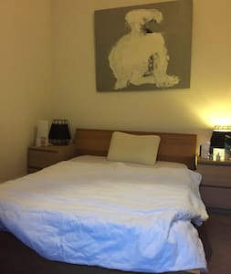 rent a room, be nice and cool - Geneva - Condominium