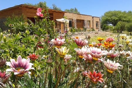 Elqui Valley, Vicuna, triple room! - Vicuna - Bed & Breakfast