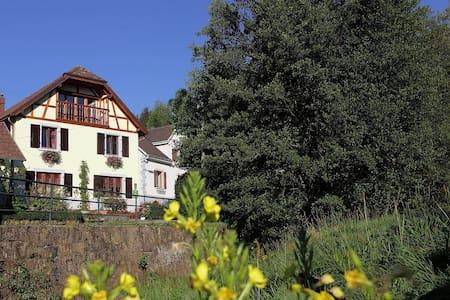 gîte rural tout confort 2pers au coeur de l'Alsace - House