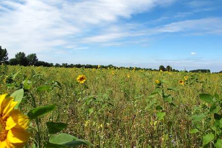 Das Gärtnerinnenhaus - ökologisch und einmalig - Buchberg