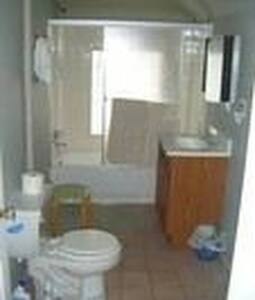 Enjoy area of Plymouth/Northville - Northville - Apartment