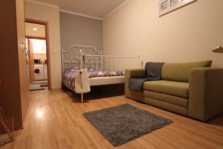 Apartment Europa 132 - Leilighet