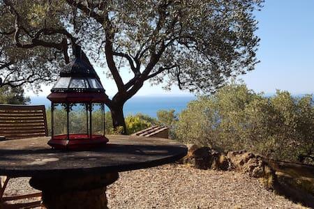 Argentario, Casale Oliveto vista mare - Porto Santo Stefano