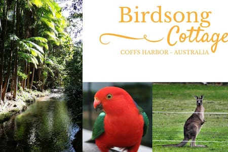 Birdsong Cottage Coffs Harbour - Two King Singles - Coffs Harbour