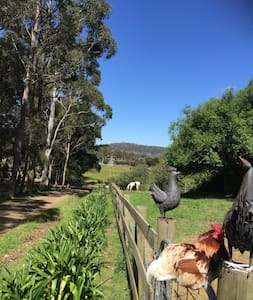 The Beautiful Barn at Full Gallop Farm Hobart - Allens Rivulet - Haus