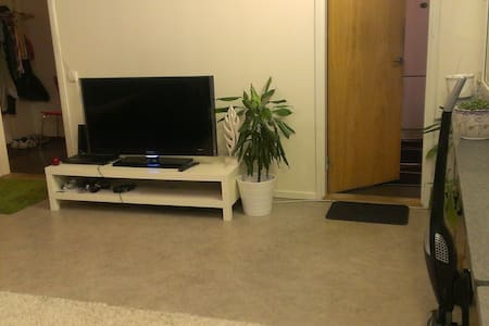 Cleaned & Studio Apartment located in city - Apartment