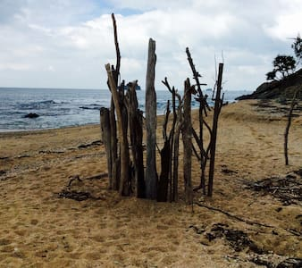 Unique ,superb beach house . - Zilzie - Casa