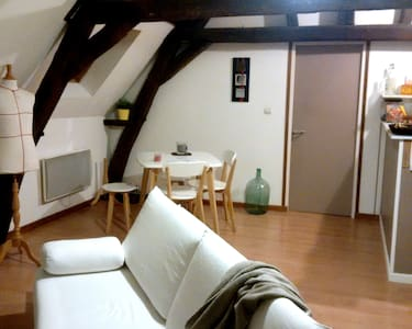 Nice flat under roofs - Apartment