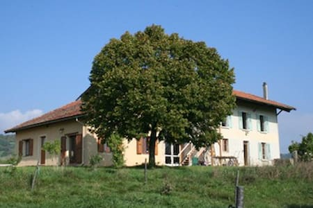 la grange du haut - Saint-Antoine-l'Abbaye - Dům