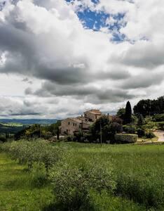 Borgo Casalta - Country House - Massa Martana - Apartment