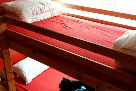 Bunk beds, perfect for a weary traveller - House