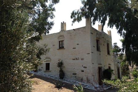 Unique ancient stone Tower House - Dom