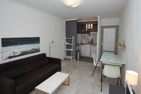 Bright studio flat with balcony - Nice - Apartment
