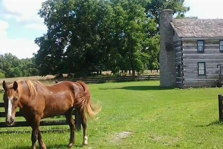 Full Historic Cabin, sleeps 6-8 - Harrodsburg
