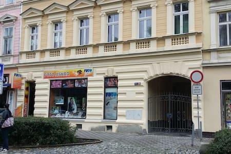 Ana Apartments Karlovy vary centre - Lejlighed