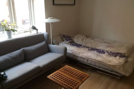 Cosy apartment i the center of Aarhus - Aarhus - Pis