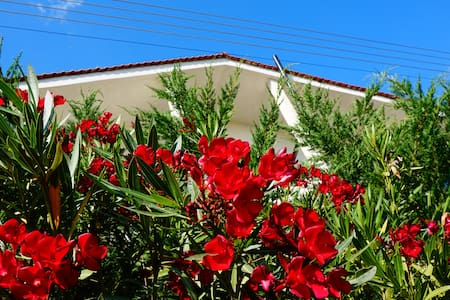Chill out Bed & Breakfast Guesthouse - Psakoudia - Bed & Breakfast